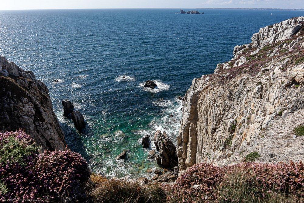vista dall'altro di una scogliera della Bretagna con Eriche e arbusti mare blu intenso e turchese vicino alle rocce natura selvaggia