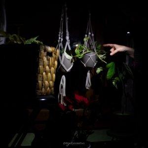 foto sottoesposta in cui il soggetto sono dei vasi di fiori illuminati dalla torcia di un cellulare dove si vede una mano con un dito che indica i vasi illuminati