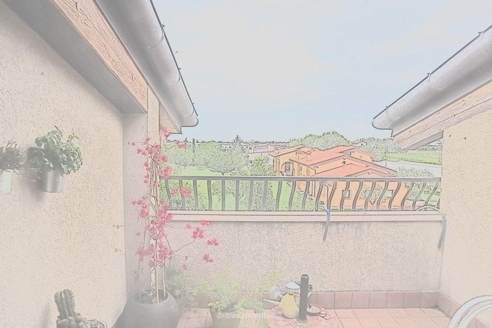 foto di un terrazzino con piante e vasi e all'orizzonte un grande giardino verde, immagine molto chiara che ha un effetto di dipinto fatto ad acquerello ma in realtà è una fotografia digitale